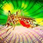 parasitismo intermediario tecnologico